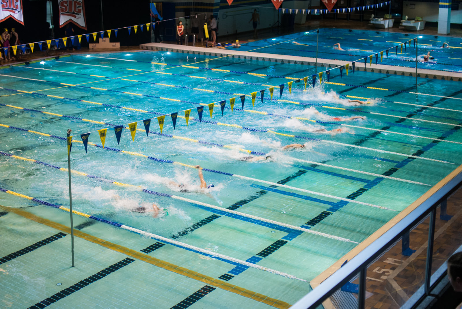 Both the men's and women's teams placed first at the Canada West championship meet.