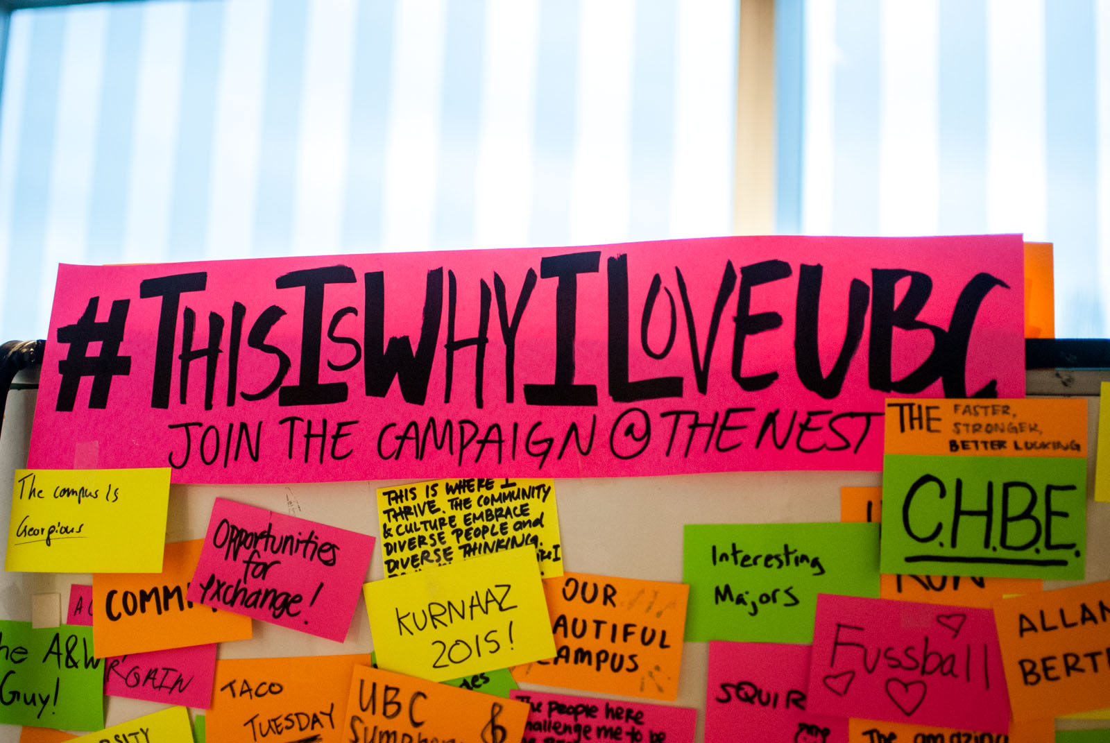 Hundreds of students wrote out what they loved about UBC for a campaign run by the AMS and The Party Calendar in reaction to the proposed international tuition increases.