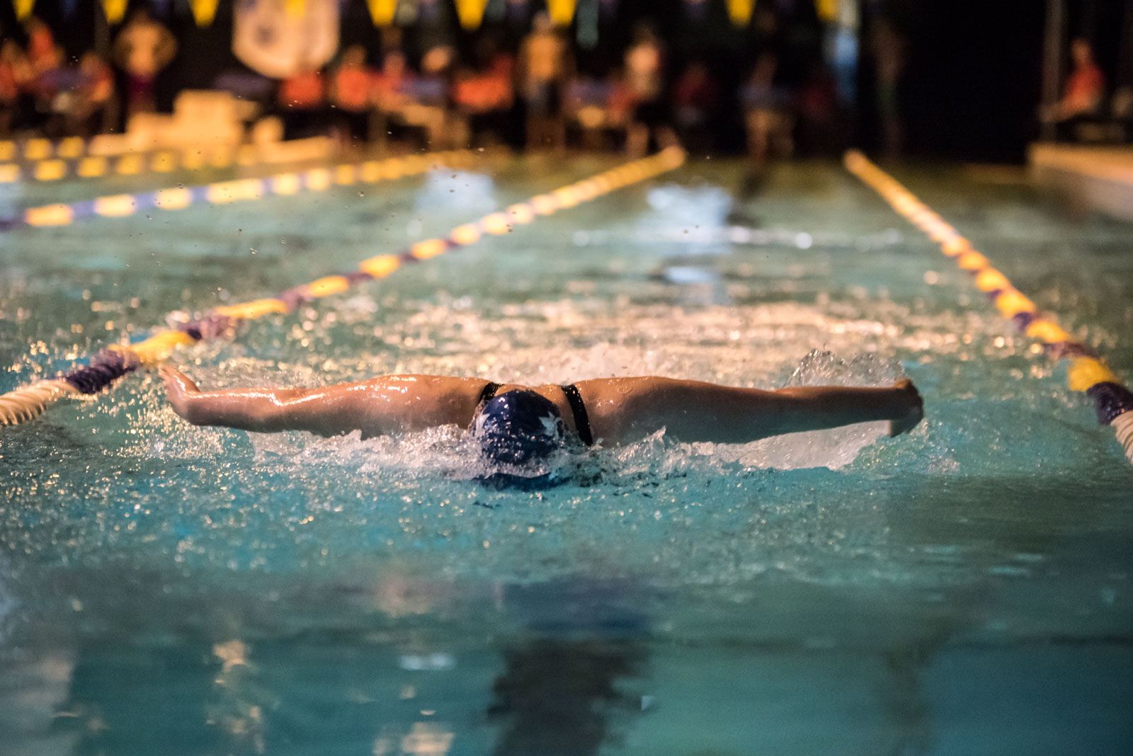 It's been another dominating season so far for the swim team.