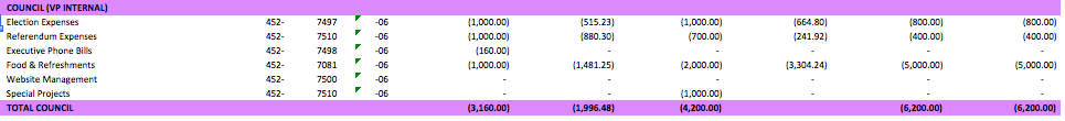 A screenshot of Council expenses listed on the budget.