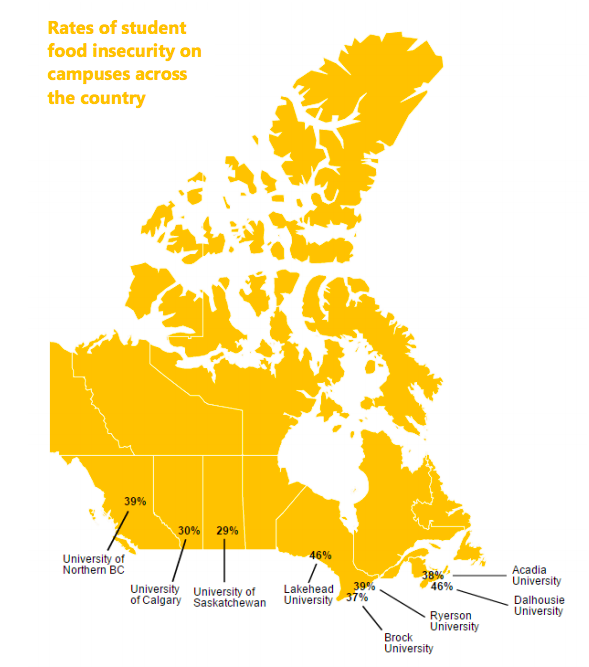 UBC's rates of food insecurity are on par with other institutions across Canada.