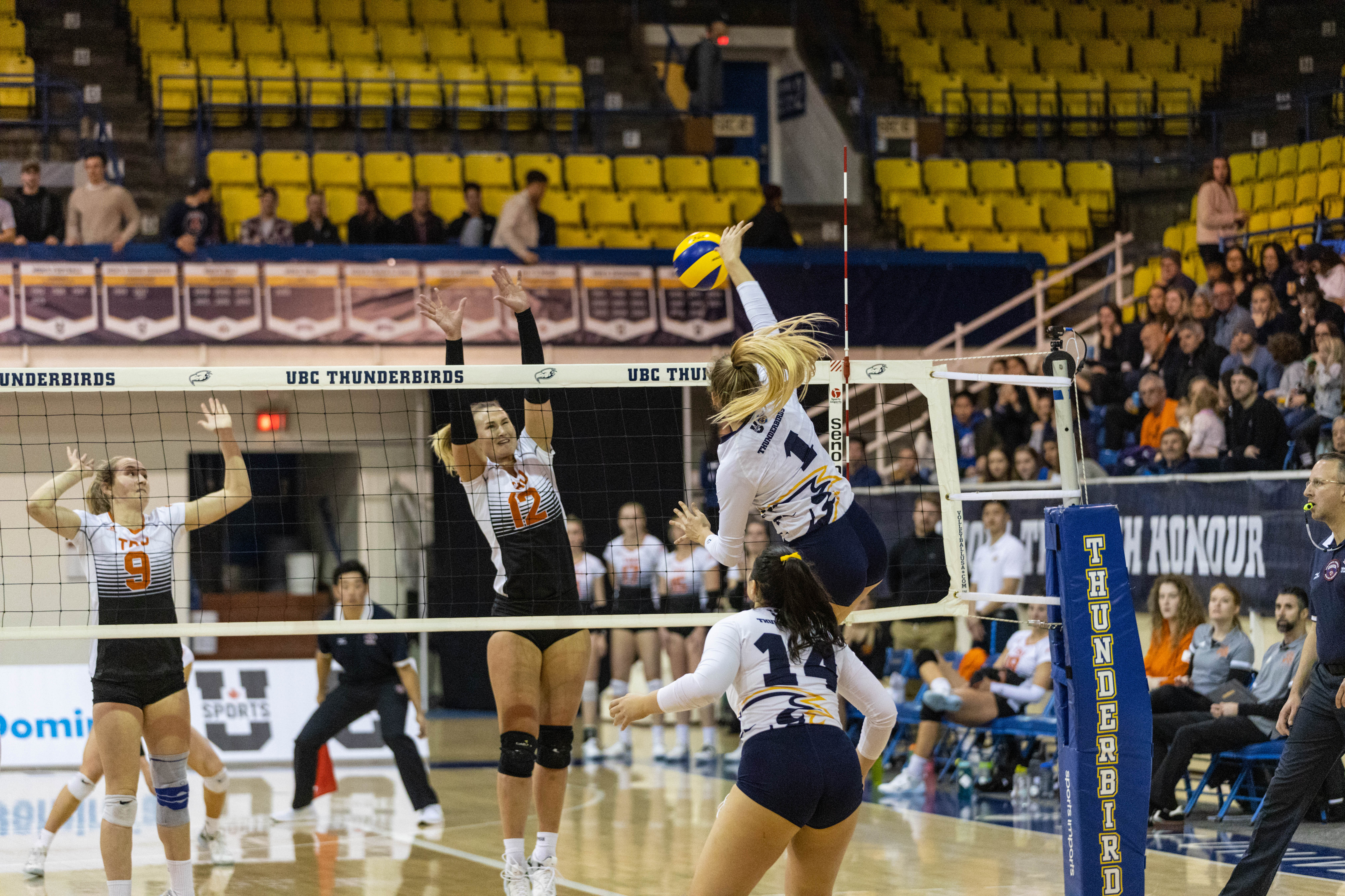 Next term's schedule will be the ultimate test for the Thunderbirds women's volleyball team.