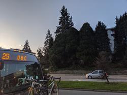 25 bus