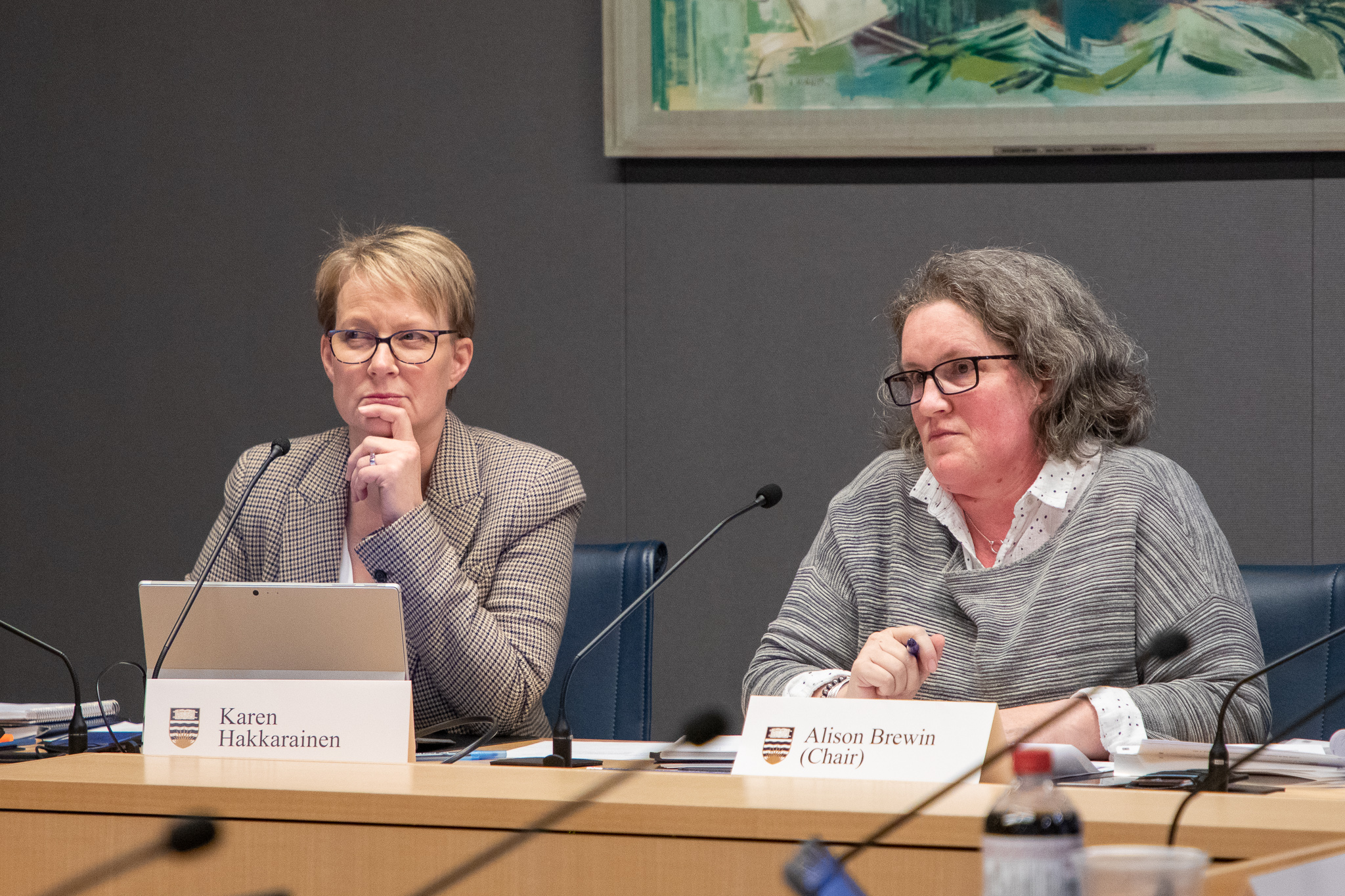"""We need to clear this up for our own confidence in democracy,"" said Governance Committee Chair Alison Brewin (right)."