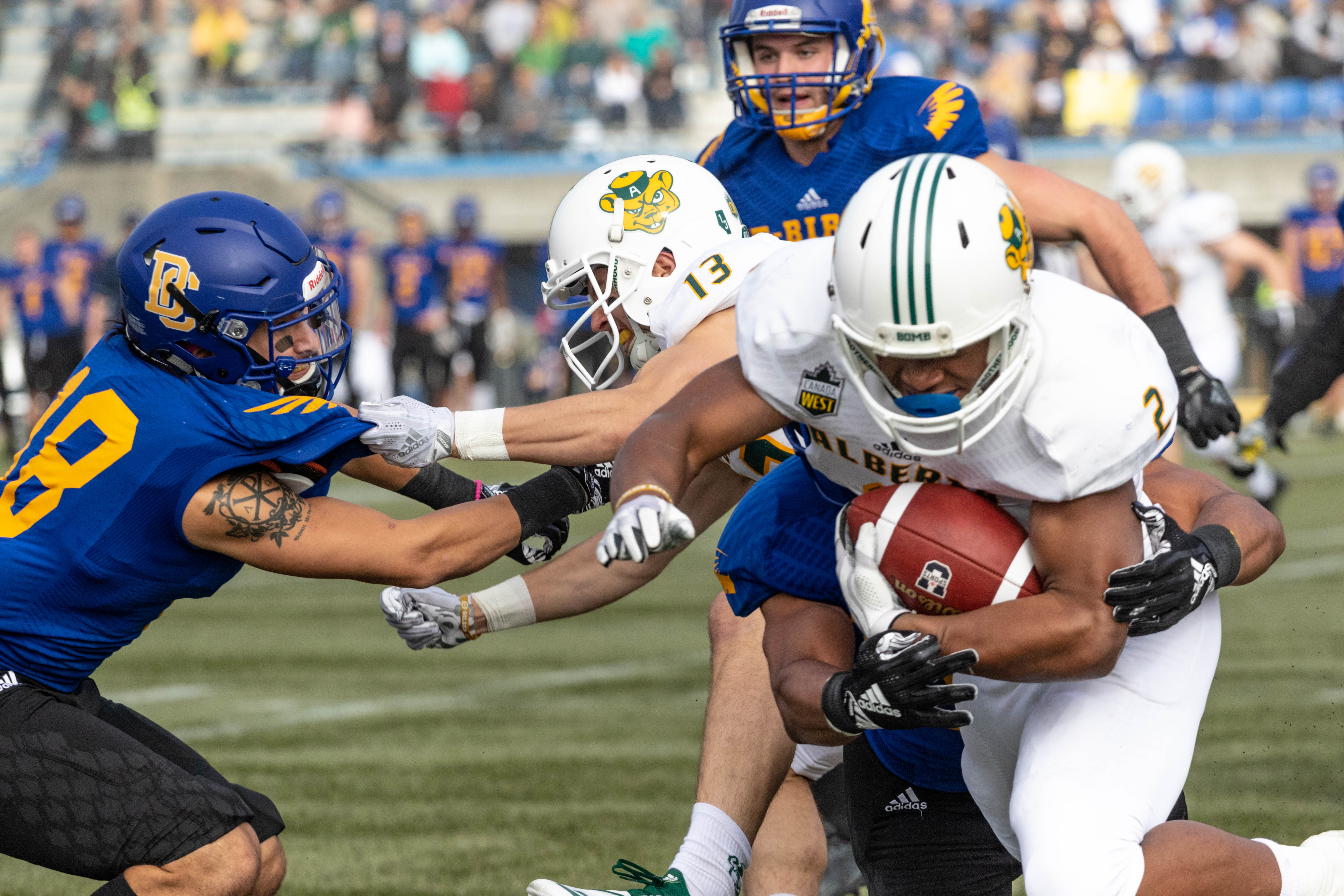 Katsantonis battles with the Alberta Golden Bears back in 2018.