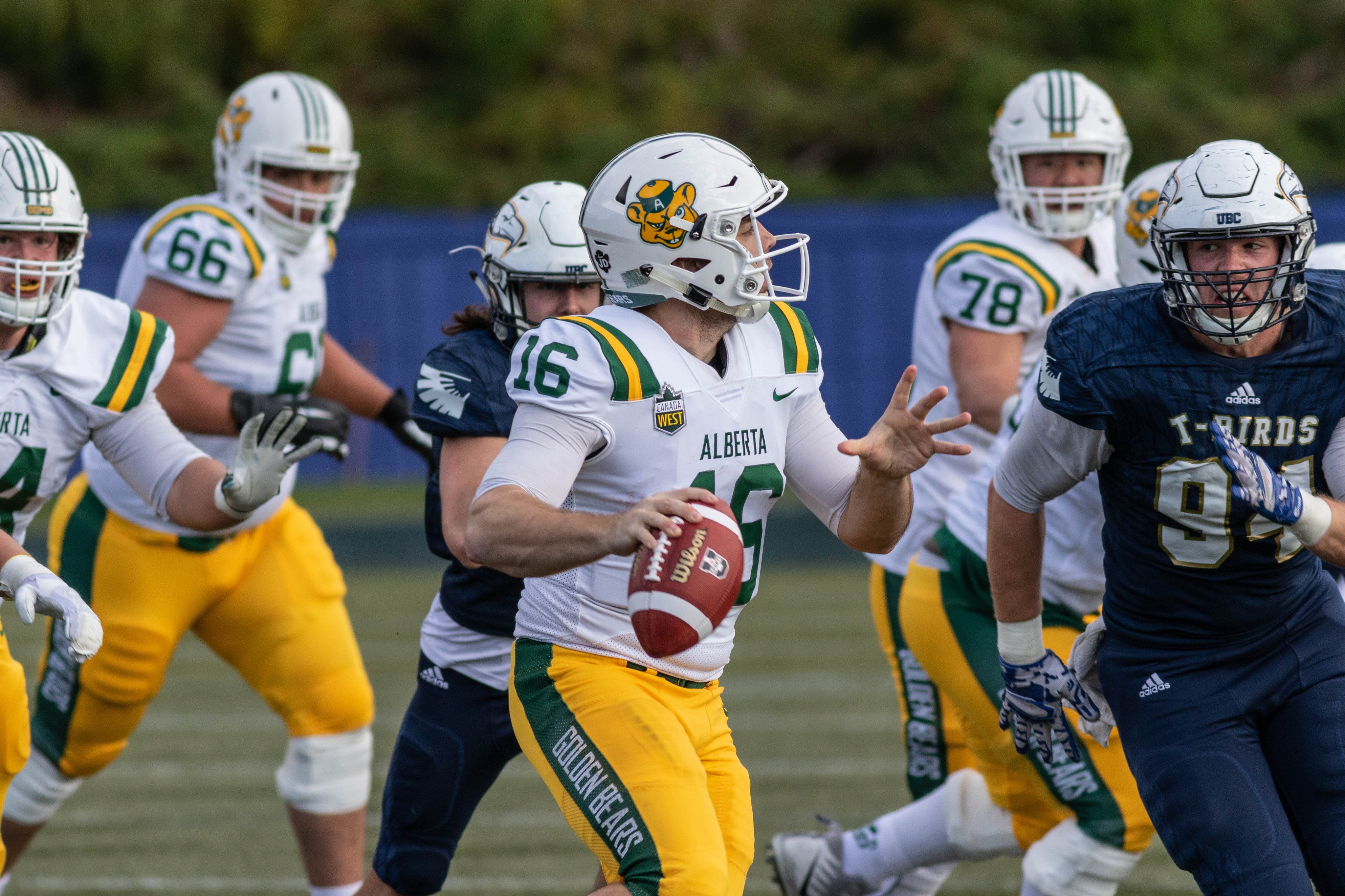 Schnitzler heads for the Alberta Golden Bears quarterback in 2019.