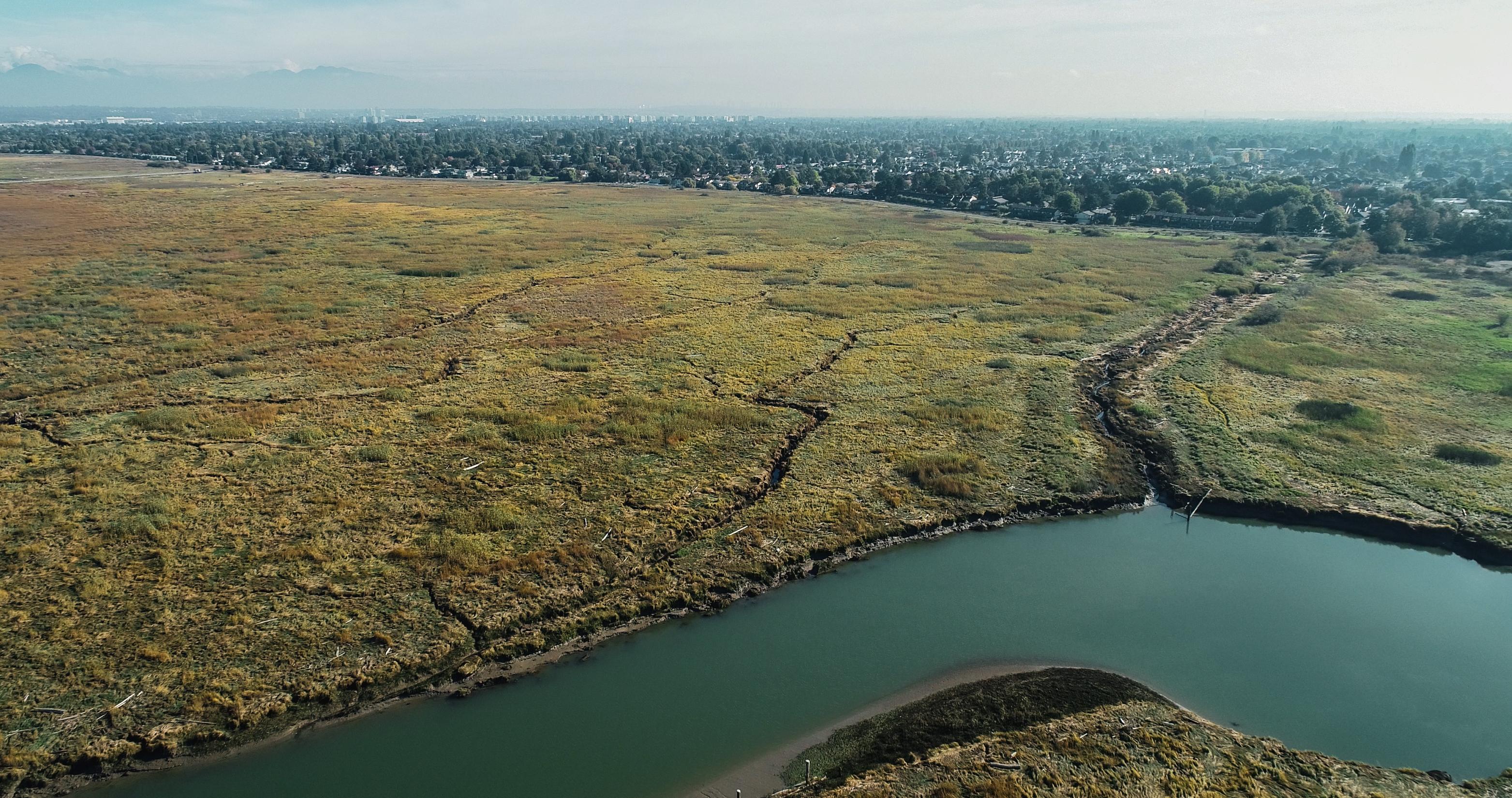 The Fraser River estuary.