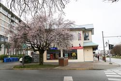McDonald's University Village