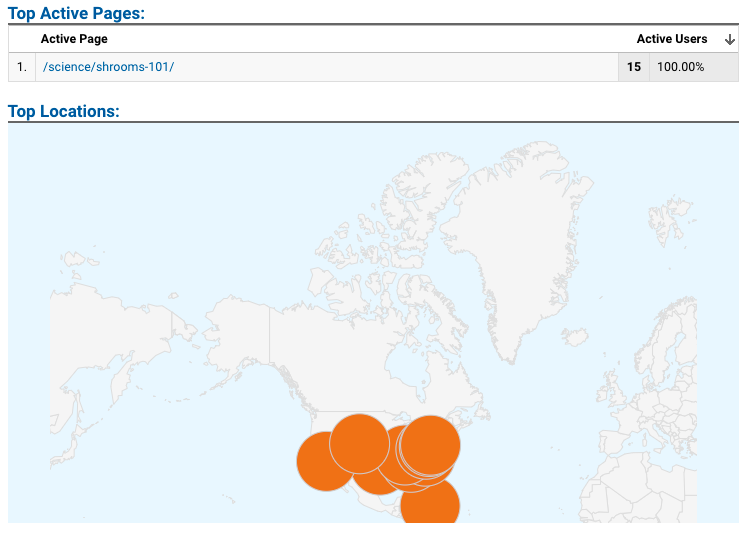 I know this map looks weird, but I couldn't adjust it. Thanks, Google Analytics.