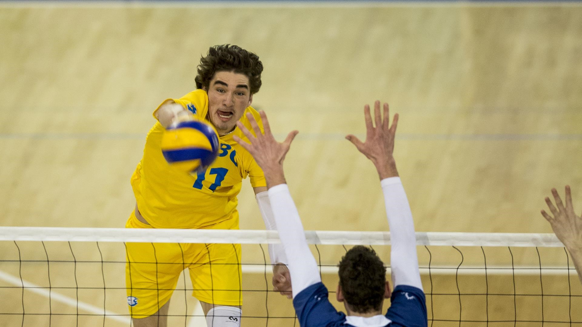 The former middle blocker McCarthy also chose the professional path after winning the championship in his first year.