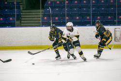 women's hockey ubc v twu