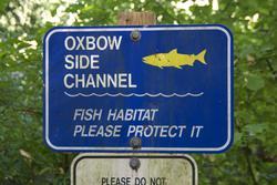 Oxbow side channel